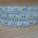 |china led strip supplier|24v led strip|outside led strip lights|_1