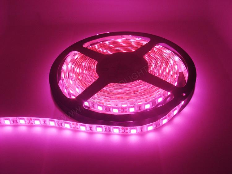 |strip led lights|12v strip led lights|waterproof strip led lights|_4