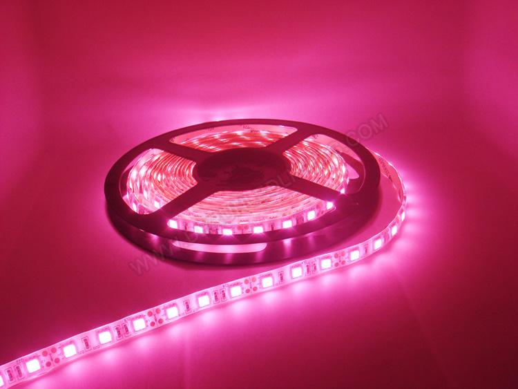 |strip led lights|12v strip led lights|waterproof strip led lights|_3