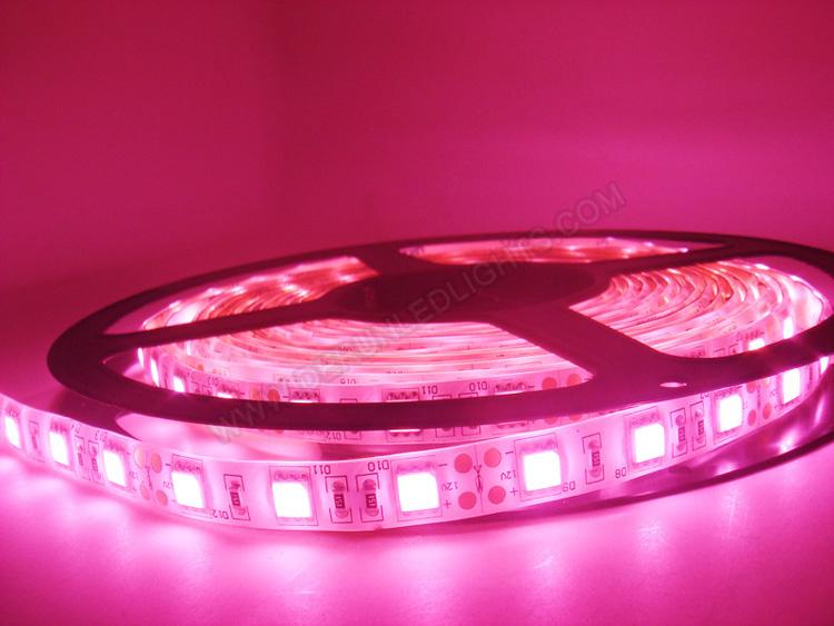 |strip led lights|12v strip led lights|waterproof strip led lights|_5