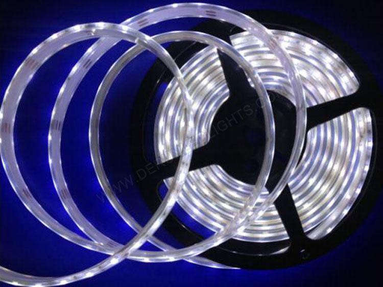  led 5630 strip 5630 led strip lights 5630 led strip smd 5630 led strip 5m 5630 led strip 5630 600 led strip _3