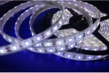 |led 5630 strip|5630 led strip lights|5630 led strip|smd 5630 led strip|5m 5630 led strip|5630 600 led strip|