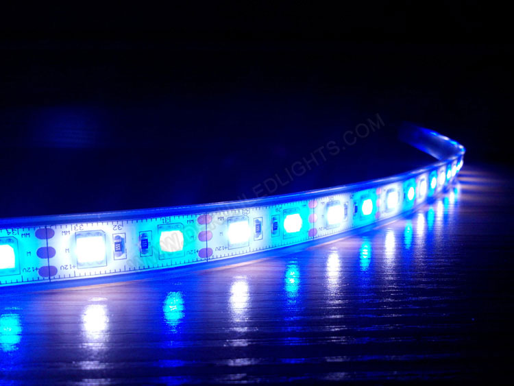 5050 72w 300leds 164ft roll double color strip led lighting in 5050 72w 300leds 164ft roll double color strip led lighting in white blue aloadofball Image collections