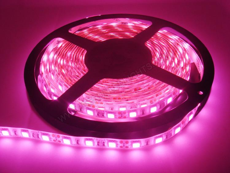 |strip led lights|12v strip led lights|waterproof strip led lights|_2