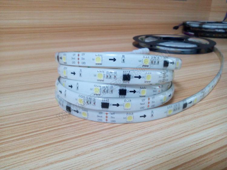 5050 300Leds 12V 72W 16 4Ft Roll White Color Addressable led