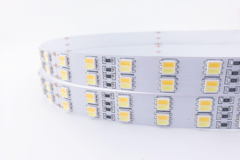24V CCT Color LED Strip Lights