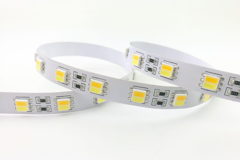 5050 60leds/m 24V CCT Color LED Strip Lights